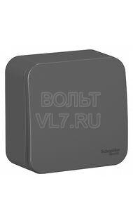 Переключатель 1кл. наруж изолир пластина антрацит Blanca Schneider BLNVA106016