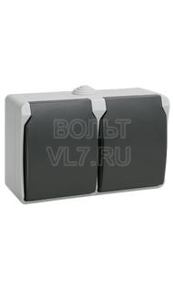 Розетка 2м с/з  серый IP54 ФОРС ИЭК ERS22-K03-16-54-DC