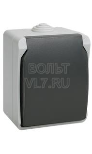 Розетка 1м с/з серый IP54 ФОРС ИЭК ERS12-K03-16-54-DC